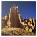 Formaciones de roca en el barranco de Bryce Azulejo Cuadrado Grande
