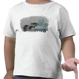 Formaciones del iceberg camisetas