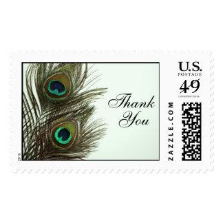 Formal gracias sello de la pluma del pavo real