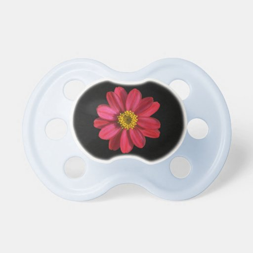 Formal Pink Zinnia on Black Baby Pacifier