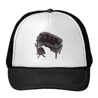 FormalDesk042509a Trucker Hat