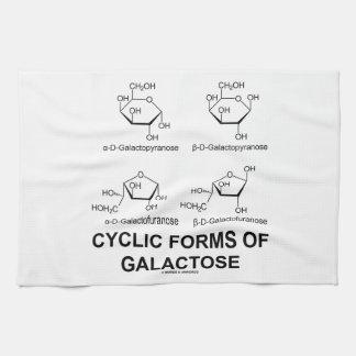 Formas cíclicas de galactosa (estructura de la toallas