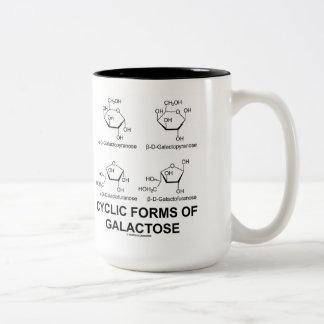 Formas cíclicas de galactosa (estructura de la taza de café de dos colores