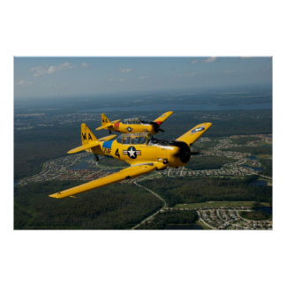 Formation Flying T6 Style Print