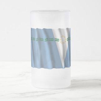 Formosa waving flag 16 oz frosted glass beer mug