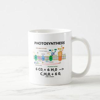 Fórmula de la fotosíntesis (sustancia química) taza