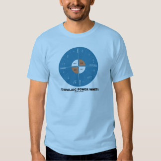Formulaic Power Wheel (Physics Equations) Tee Shirt