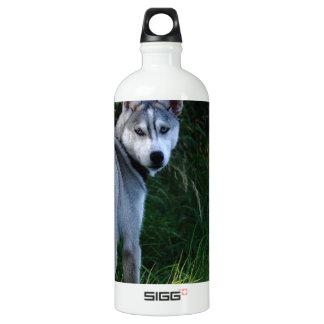 Fornido Botella De Agua