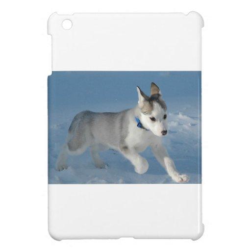 Fornido iPad Mini Protectores