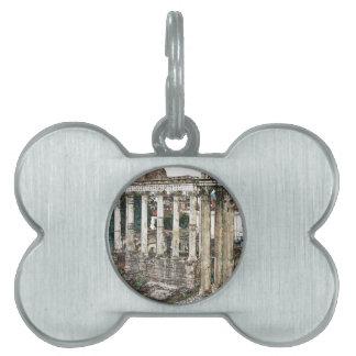 Foro romano en tiza placas mascota