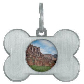 foro romano placa de mascota