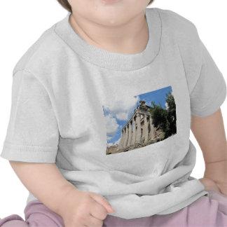 Foro romano - templo de Antoninus Camisetas