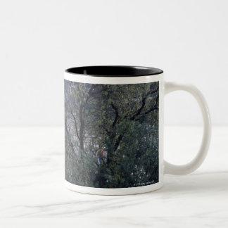 Foro Romano Two-Tone Coffee Mug