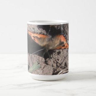 Forraje melenudo de la suciedad de la mariposa de taza de café