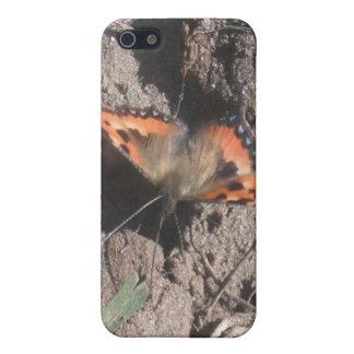 Forraje melenudo de la suciedad de la mariposa del iPhone 5 carcasas