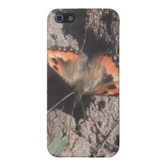 Forraje melenudo de la suciedad de la mariposa del iPhone 5 fundas