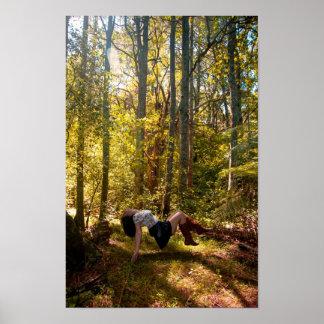 Forrest de sueños póster