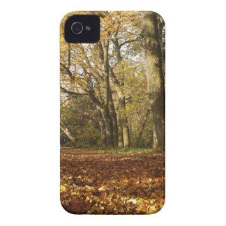 Forrest en el otoño iPhone 4 Case-Mate cárcasas