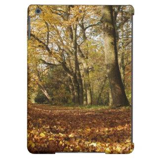 Forrest en el otoño funda para iPad air