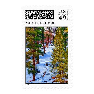 Forrest Snow Postage