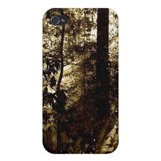 Forrest y la luz iPhone 4/4S carcasas