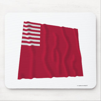Forster-Knight Waving Color Mouse Pad