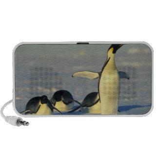 Forsteri de los pingüinos, del Aptenodytes de empe Altavoces De Viajar