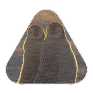 Forsteri de los pingüinos, del Aptenodytes de empe Altavoz Bluetooth