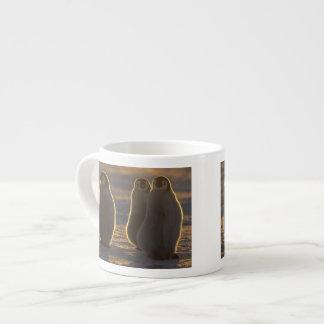 Forsteri de los pingüinos, del Aptenodytes de Taza Espresso