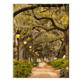 Forsyth Park - Photo, Savannah, Georgia (GA) USA Postcard
