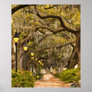 Forsyth Park - Photo, Savannah, Georgia (GA) USA Poster