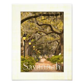 Forsyth Park - Savannah, GA Photo Print