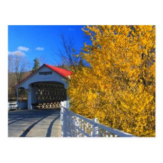 Forsythia del puente cubierto de Ashuelot Tarjetas Postales