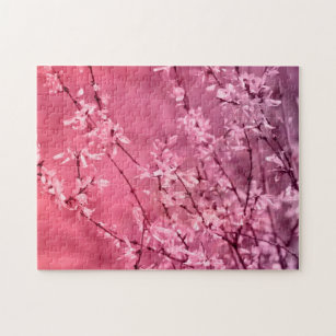 Pink Forsythia Gifts On Zazzle