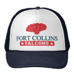 Fort Collins Falcons - Home of Balloon Boy Hats
