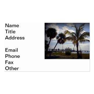Fort DeSota Fishing Pier Double-Sided Standard Business Cards (Pack Of 100)