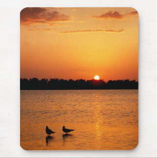 Fort DeSoto Sunset Mouse Pad