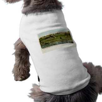 Fort Mackinac from the Harbor Vintage Pet Clothes