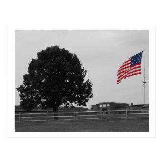 Fort McHenry Postcard