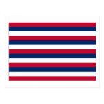 Fort Mifflin Flag Postcard