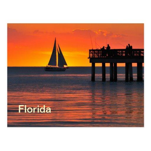 Fort Myers sunset Postcard