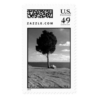 Fort Phoenix Tree Stamp