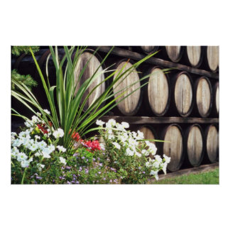 Fortified wines Pink flowers Poster