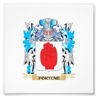 Fortune Coat of Arms - Family Crest Art Photo