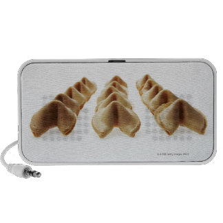 Fortune Cookies in three rows Travelling Speaker