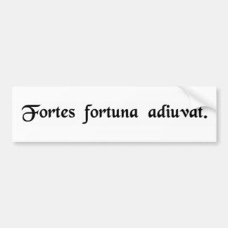 Fortune favors the bold. bumper sticker