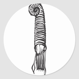 Fósil de la amonita pegatina redonda