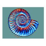 Fósil de la amonita tarjeta postal