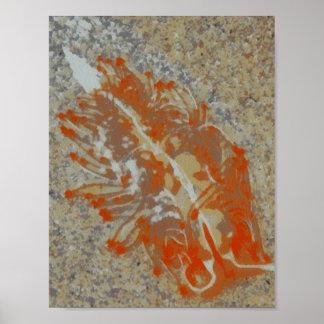 Fósil de la barra de mar póster