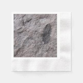 Fósil de la planta 350 millones de años. Coctail Servilletas De Papel